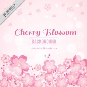 Sfondo sfocato fiori di ciliegio in toni rosa
