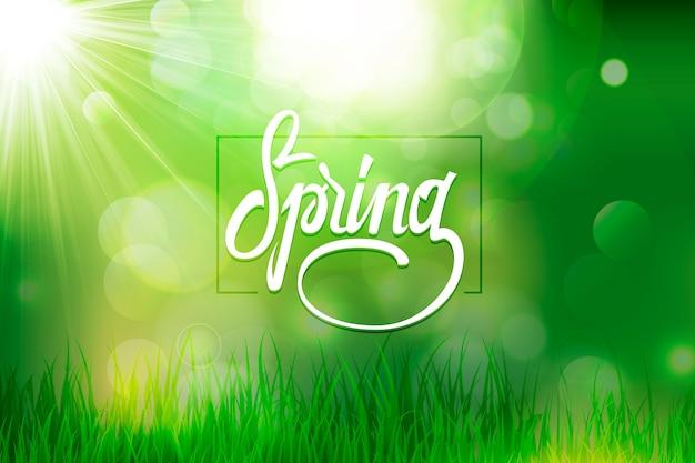 Sfondo sfocato primavera con effetto verde bokeh ed erba