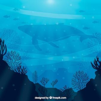 Sfondo sott'acqua con diverse specie marine