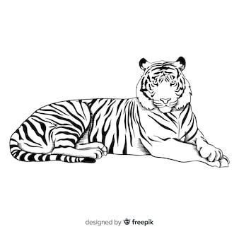 Sfondo tigre