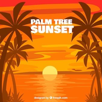 Sfondo tramonto con palme