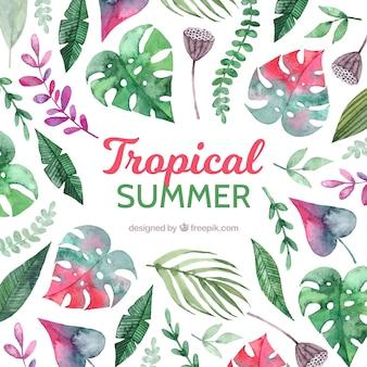 Sfondo tropicale con diverse specie di foglie
