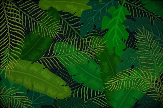 Sfondo tropicale con foglie verdi