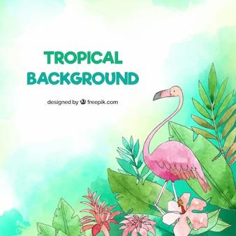 Sfondo tropicale con uccelli e foglie in stile acquerello