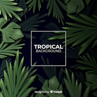 Sfondo tropicale realistico