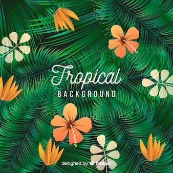 Sfondo tropicale