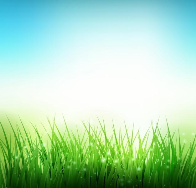 Sfondo verde erba naturale