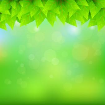 Sfondo verde naturale