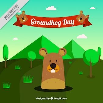 Sfondo verde paesaggio con marmotta