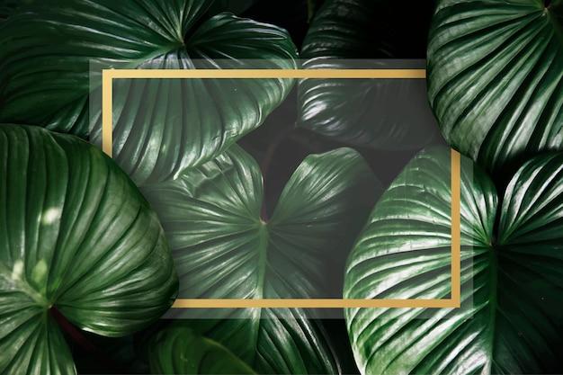 Sfondo verde tropicale