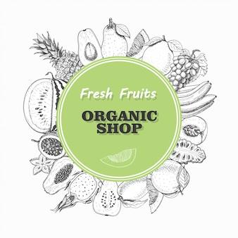 Sfondo vettoriale con frutti isolati in un cerchio