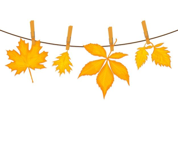 Sfondo vettoriale di foglie d'autunno