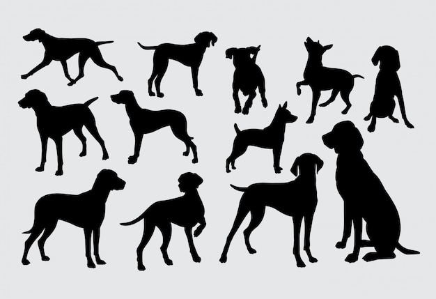Silhouette di cani