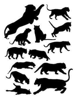 Silhouette di tigre