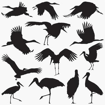 Silhouette stork
