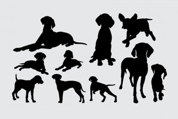 Siluetta animale del mammifero del cane del puntatore