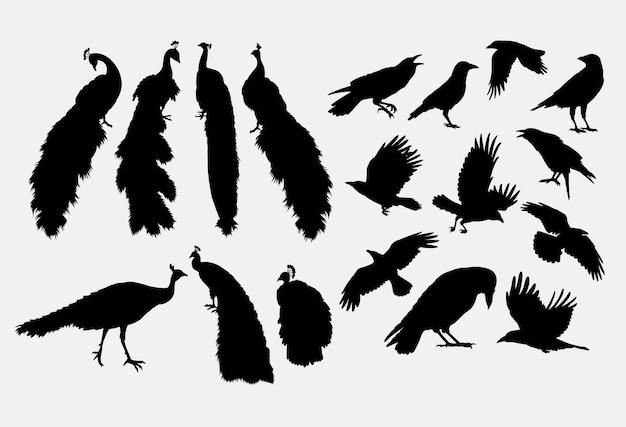Siluetta animale dell'uccello del corvo e del pavone
