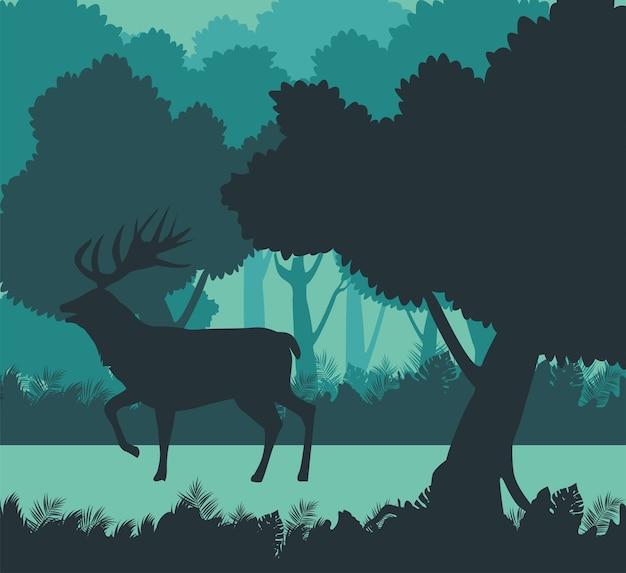 Siluetta animale della renna selvaggia nella scena della foresta
