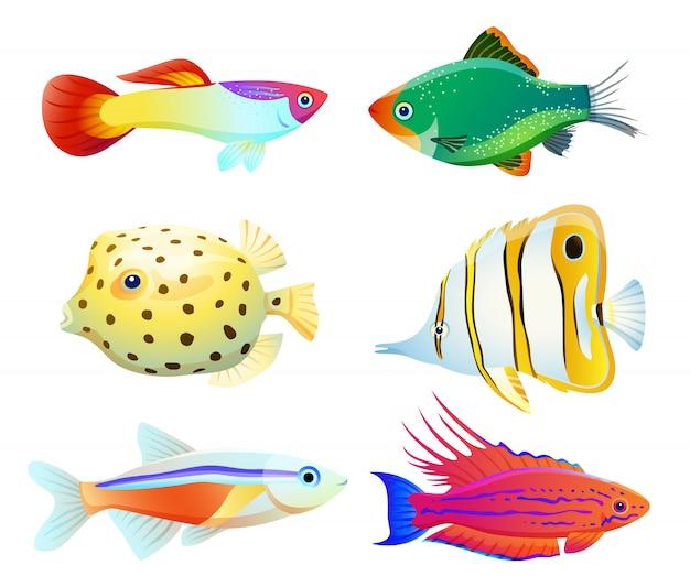 Siluetta dei pesci dell'acquario isolata