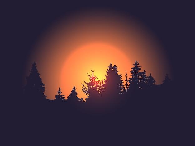 Siluetta della foresta contro il sole