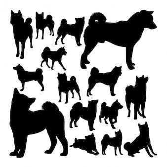 Siluette animali del cane di shiba inu