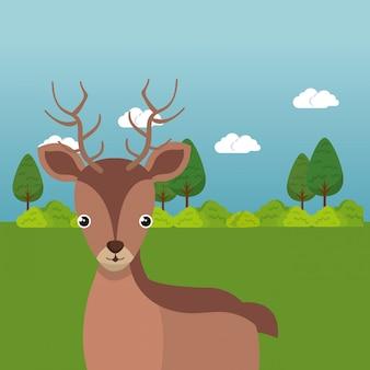 Simpatica renna nel personaggio di paesaggio di campo
