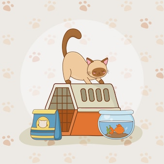Simpatiche mascotte acquario piccolo gattino e pesce