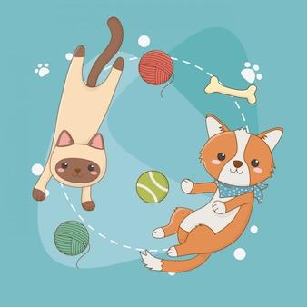 Simpatiche mascotte di cane e gatto con set di giocattoli