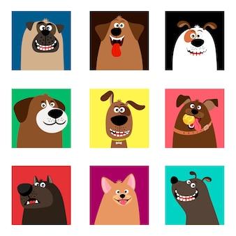 Simpatiche teste di cuccioli comici