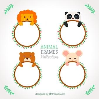 Simpatici animali arrotondati cornici