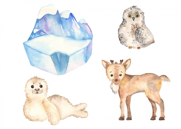 Simpatici animali artici renne, gufo, foca in stile acquerello