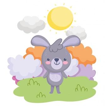 Simpatici animali, piccolo coniglio in piedi nel cielo del prato