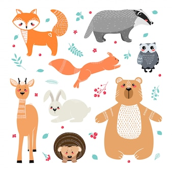 Simpatici animali: volpe, tasso, scoiattolo, gufo, cervo, daina, capriolo, lepre, coniglio, riccio, orso e diversi elementi. illustrazione disegnata a mano