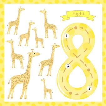 Simpatici bambini traccia flashcard numero uno con 8 giraffe per bambini che imparano a contare e scrivere.