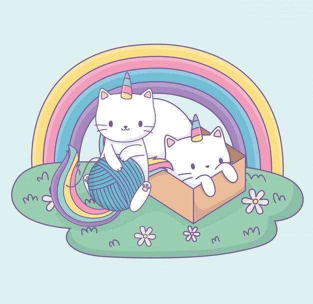 Simpatici gatti con coda arcobaleno e personaggi kawaii scatola di cartone