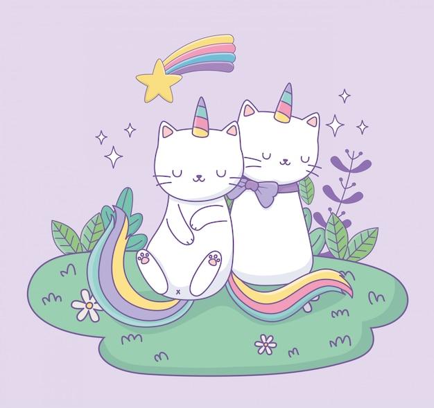 Simpatici gatti con la coda arcobaleno nei caratteri kawaii del campo