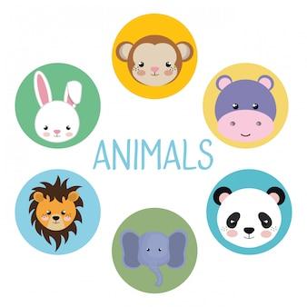 Simpatici personaggi di animali con testa di gruppo