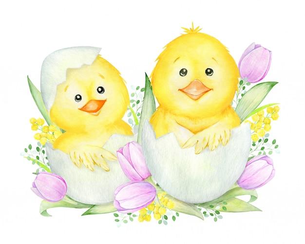 Simpatici pulcini nati da un uovo. concetto di acquerello