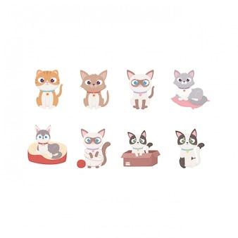 Simpatico cane e gatti diversi personaggi dei cartoni animati animali, animali domestici