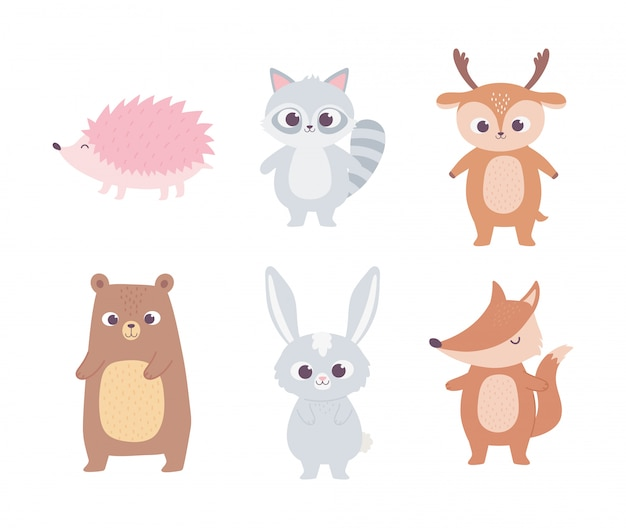 Simpatico cartone animato animali orso piccolo procione cervo coniglio volpe e riccio