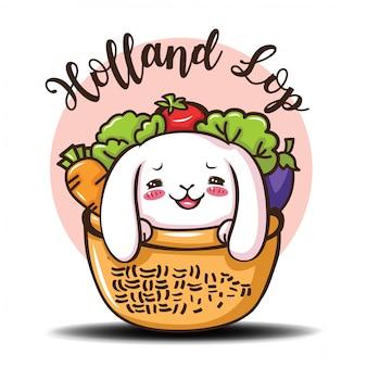 Simpatico cartone animato di coniglio holland lop.