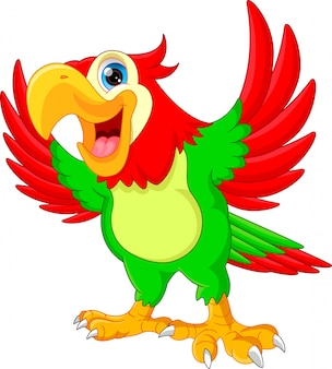 Simpatico cartone animato pappagallo