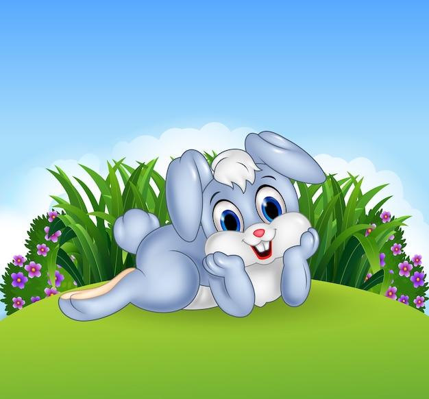 Simpatico coniglietto si sdraia nella giungla