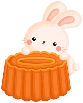Simpatico coniglietto sul mooncake