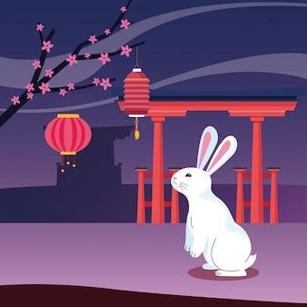 Simpatico coniglio e felice festa di metà autunno