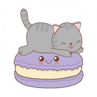 Simpatico gattino con carattere kawaii biscotti