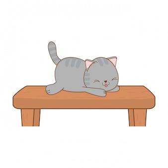 Simpatico gattino in carattere kawaii scaffale