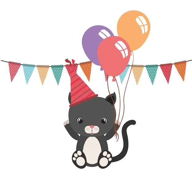 Simpatico gatto con palloncini elio