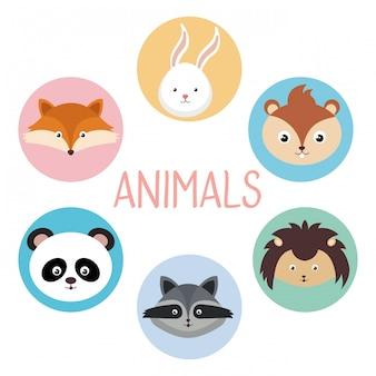 Simpatico gruppo di personaggi di teste di animali