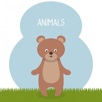 Simpatico orso nel personaggio paesaggio campo